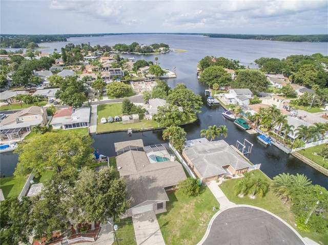 32 Citrus Drive, Palm Harbor, FL 34684 (MLS #T3265720) :: Delgado Home Team at Keller Williams