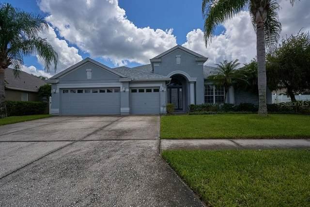 30430 Treyburn Loop, Wesley Chapel, FL 33543 (MLS #T3265744) :: Zarghami Group