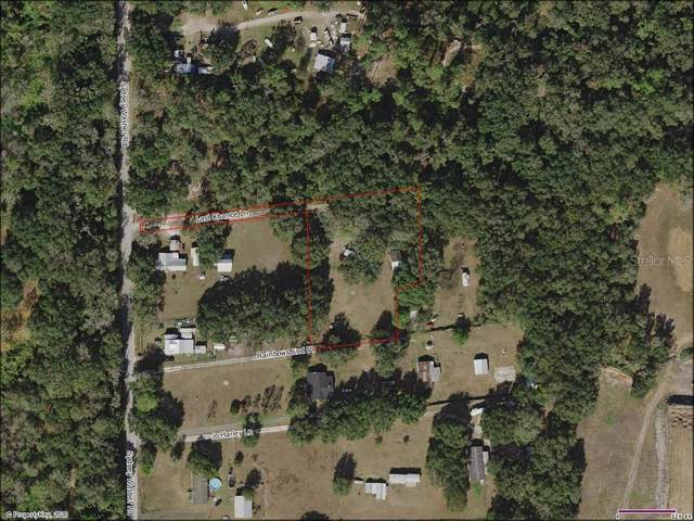 411 Sydney Washer Road, Dover, FL 33527 (MLS #T3265797) :: Rabell Realty Group