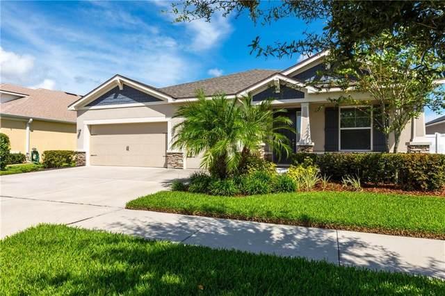 12318 Juniper Field Court, Riverview, FL 33579 (MLS #T3265805) :: Gate Arty & the Group - Keller Williams Realty Smart