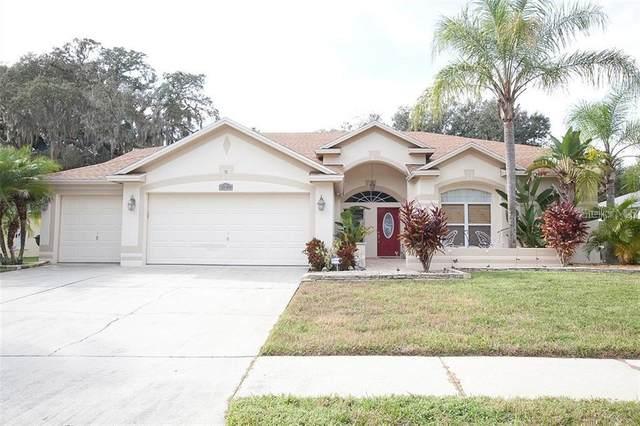 2928 Folklore Drive, Valrico, FL 33596 (MLS #T3265818) :: Keller Williams on the Water/Sarasota