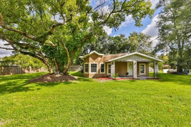 9518 Six Mile Creek Road, Tampa, FL 33610 (MLS #T3265871) :: Alpha Equity Team