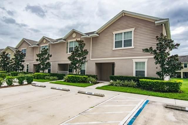 5022 Chipotle Lane, Wesley Chapel, FL 33544 (MLS #T3265892) :: Pepine Realty