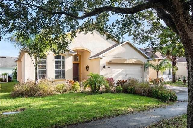 8904 Sandy Plains Drive, Riverview, FL 33578 (MLS #T3265894) :: Gate Arty & the Group - Keller Williams Realty Smart