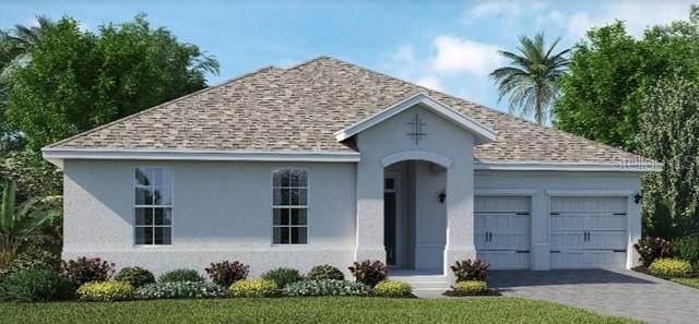 12518 Folklore Lane, Orlando, FL 32832 (MLS #T3265903) :: GO Realty