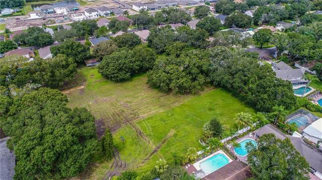 XXXX Jackson Road, Tampa, FL 33624 (MLS #T3265976) :: Griffin Group