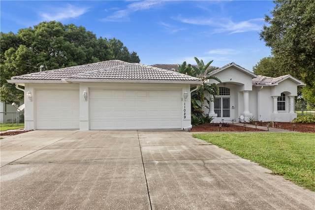 11029 Calico Warbler Avenue, Weeki Wachee, FL 34613 (MLS #T3266000) :: Bustamante Real Estate