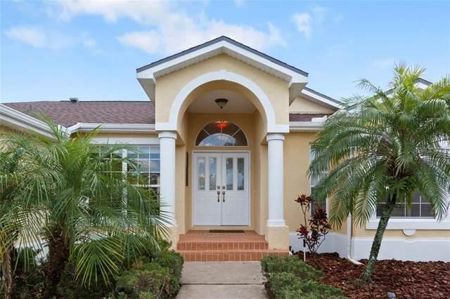 8650 Linebrook Drive, Trinity, FL 34655 (MLS #T3266023) :: Team Bohannon Keller Williams, Tampa Properties