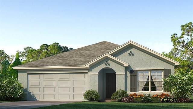432 Calico Scallop Street, Ruskin, FL 33570 (MLS #T3266066) :: Cartwright Realty