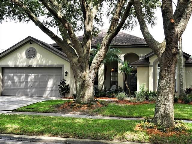 16503 Lake Heather Drive, Tampa, FL 33618 (MLS #T3266067) :: Delgado Home Team at Keller Williams
