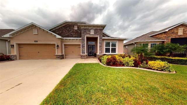 12663 Flatwood Creek Drive, Gibsonton, FL 33534 (MLS #T3266081) :: Alpha Equity Team