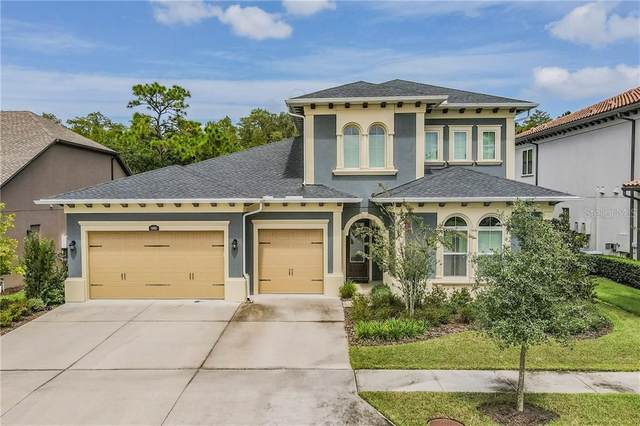 18003 Pine Hammock Boulevard, Lutz, FL 33548 (MLS #T3266166) :: Bridge Realty Group