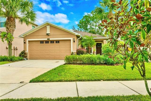 7861 Tuscany Woods Drive, Tampa, FL 33647 (MLS #T3266169) :: Premier Home Experts