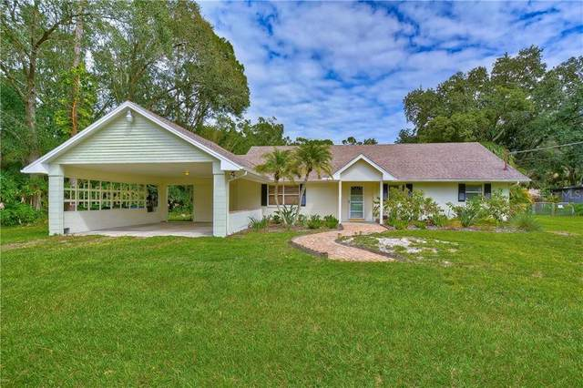 11403 N Grady Avenue, Tampa, FL 33618 (MLS #T3266241) :: Griffin Group
