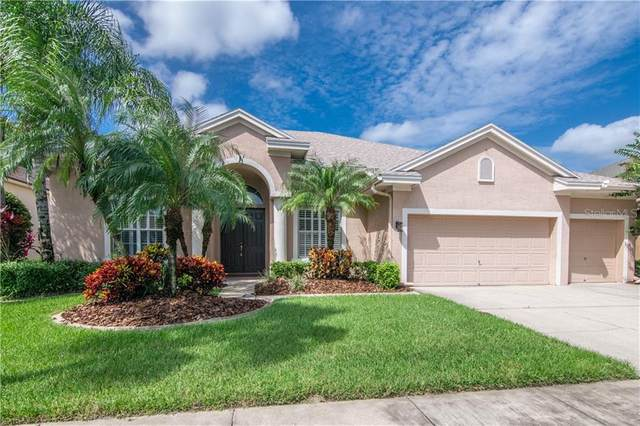 10615 Gretna Green Drive, Tampa, FL 33626 (MLS #T3266264) :: The Nathan Bangs Group