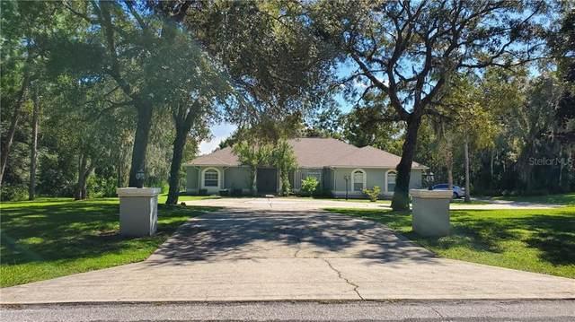 464 E Liberty, Hernando, FL 34442 (MLS #T3266294) :: Pristine Properties