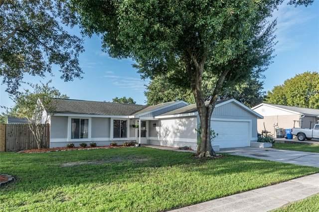 1520 Piney Branch Circle, Valrico, FL 33594 (MLS #T3266296) :: Ramos Professionals Group