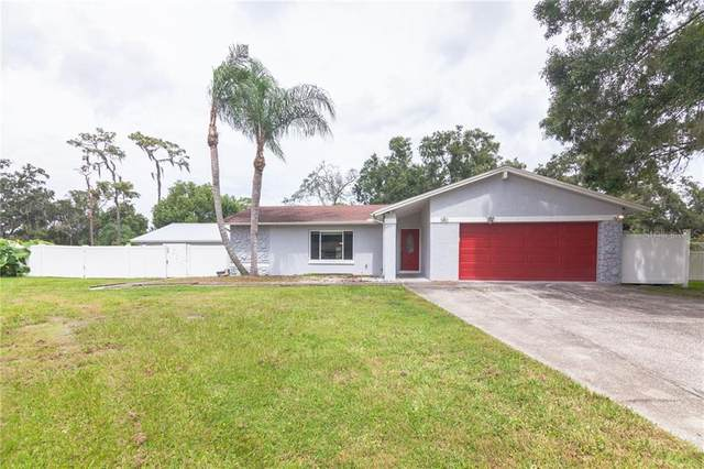 502 Pine Lane, Brandon, FL 33511 (MLS #T3266302) :: Delgado Home Team at Keller Williams