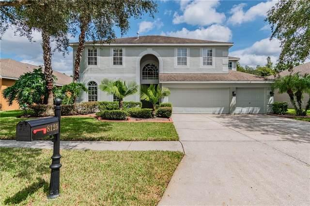 8125 Brinegar Circle, Tampa, FL 33647 (MLS #T3266355) :: Team Bohannon Keller Williams, Tampa Properties