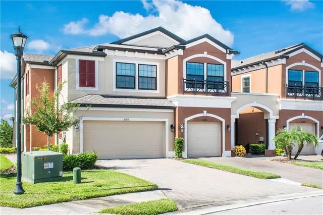 30317 Southwell Lane, Wesley Chapel, FL 33543 (MLS #T3266358) :: Delgado Home Team at Keller Williams