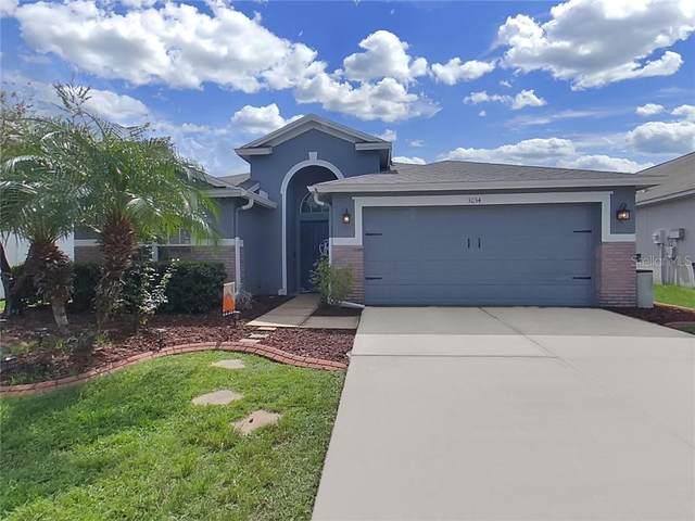 31134 Chatterly Drive, Wesley Chapel, FL 33543 (MLS #T3266373) :: Delgado Home Team at Keller Williams