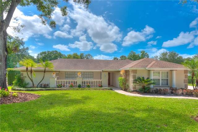 14501 Anchoret Road, Tampa, FL 33618 (MLS #T3266407) :: Griffin Group