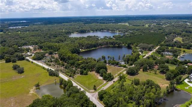 18117 Boy Scout Road, Odessa, FL 33556 (MLS #T3266443) :: Lockhart & Walseth Team, Realtors