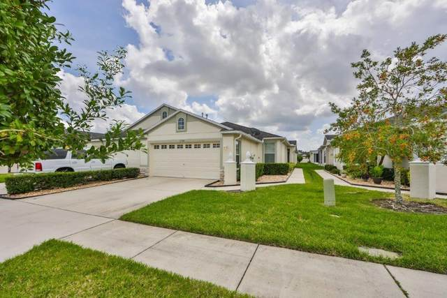 11308 Cambray Creek Loop, Riverview, FL 33579 (MLS #T3266449) :: Zarghami Group