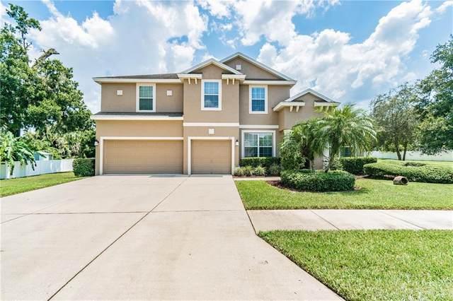501 Arch Ridge Loop, Seffner, FL 33584 (MLS #T3266492) :: Rabell Realty Group