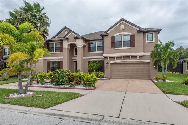 11812 Gilmerton Drive, Riverview, FL 33579 (MLS #T3266557) :: Alpha Equity Team