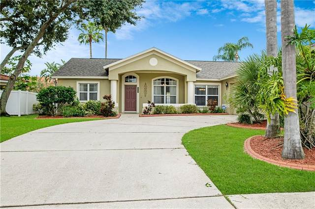 734 Tuscanny Street, Brandon, FL 33511 (MLS #T3266619) :: Florida Real Estate Sellers at Keller Williams Realty