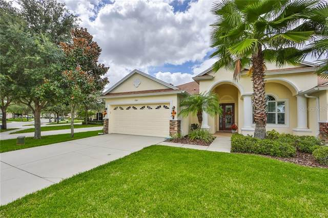 2845 Devonoak Boulevard, Land O Lakes, FL 34638 (MLS #T3266623) :: Rabell Realty Group