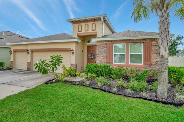6615 Fairwater Drive, Riverview, FL 33578 (MLS #T3266669) :: Alpha Equity Team