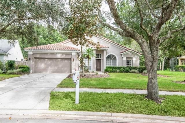 4930 Ebensburg Drive, Tampa, FL 33647 (MLS #T3266697) :: Zarghami Group