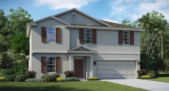 16444 Champlain Street, Clermont, FL 34714 (MLS #T3266820) :: Alpha Equity Team