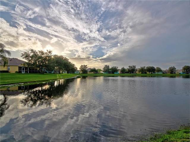11457 Captiva Kay Drive, Riverview, FL 33569 (MLS #T3266836) :: Griffin Group