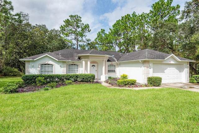 183 Linder Drive, Homosassa, FL 34446 (MLS #T3266840) :: Rabell Realty Group