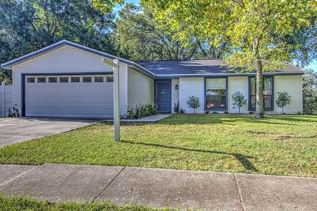 717 Herlong Court, Brandon, FL 33511 (MLS #T3266853) :: Dalton Wade Real Estate Group