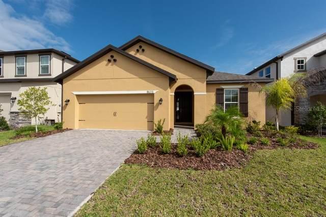 11523 Navel Orange Way, Tampa, FL 33626 (MLS #T3266867) :: Team Bohannon Keller Williams, Tampa Properties