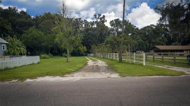 Stearns Rd, Valrico, FL 33596 (MLS #T3266874) :: Griffin Group