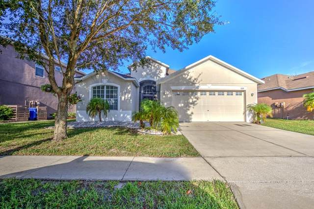 8339 Moccasin Trail Drive, Riverview, FL 33578 (MLS #T3266876) :: Griffin Group