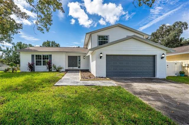 15802 Deep Creek Lane, Tampa, FL 33624 (MLS #T3266883) :: Griffin Group