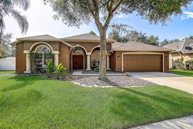 18206 Stillwell Lane, Tampa, FL 33647 (MLS #T3266897) :: The Nathan Bangs Group