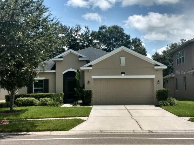 3630 Grecko Drive, Wesley Chapel, FL 33543 (MLS #T3266904) :: Griffin Group