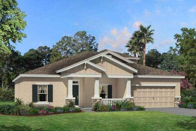 19689 Leonard Road #1415, Lutz, FL 33558 (MLS #T3266911) :: Rabell Realty Group