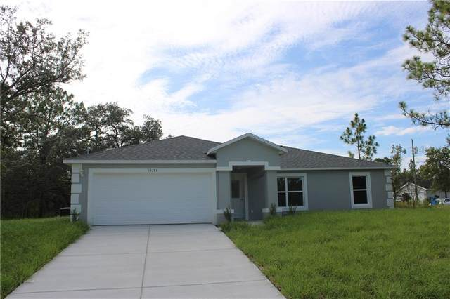 18276 Malibar Road, Weeki Wachee, FL 34614 (MLS #T3266925) :: Heckler Realty