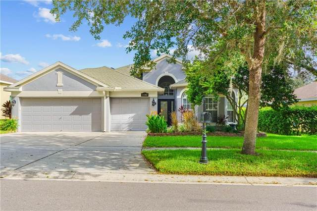 11142 Bridgecreek Drive, Riverview, FL 33569 (MLS #T3266931) :: Griffin Group