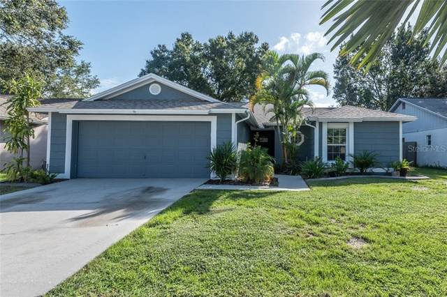 11843 Cedarfield Drive, Riverview, FL 33579 (MLS #T3266945) :: The Nathan Bangs Group