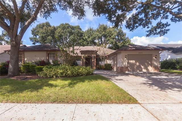 Address Not Published, Valrico, FL 33596 (MLS #T3266967) :: Dalton Wade Real Estate Group