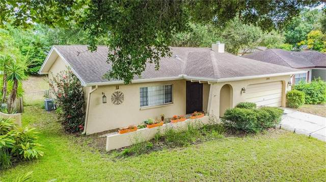 2315 E Orangehill Avenue, Palm Harbor, FL 34683 (MLS #T3266997) :: Burwell Real Estate
